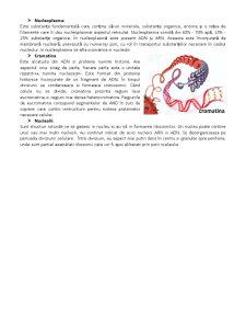 Celula, Unitatea Structurala si Genetica a Organismului - Pagina 5