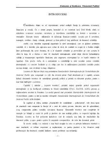 Standardele Internationale de Contabilitate in Domeniul Public si Privat - IPSAS vs IAS - Pagina 5