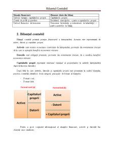 Bilantul Contabil - Pagina 2