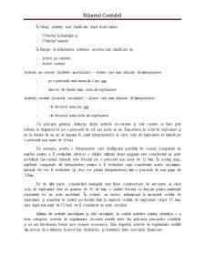 Bilantul Contabil - Pagina 3