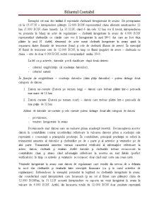 Bilantul Contabil - Pagina 4