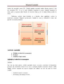 Bilantul Contabil - Pagina 5