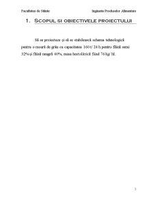 Tehnologia Moraritului - Pagina 3