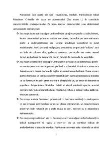 Tehnologia Moraritului - Schema Tehnica pentru o Moara de Porumb - Pagina 3