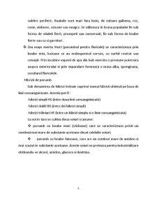 Tehnologia Moraritului - Schema Tehnica pentru o Moara de Porumb - Pagina 4