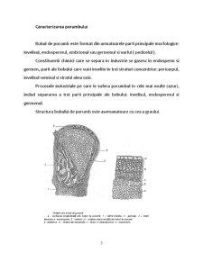 Tehnologia Moraritului - Schema Tehnica pentru o Moara de Porumb - Pagina 5