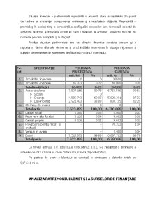 Analiza Economica Financiara a Intreprinderii - Pagina 3
