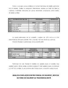 Analiza Economica Financiara a Intreprinderii - Pagina 4