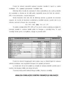 Analiza Economica Financiara a Intreprinderii - Pagina 5