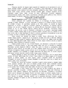 Clasificarea Speciilor Legumicole - Pagina 5