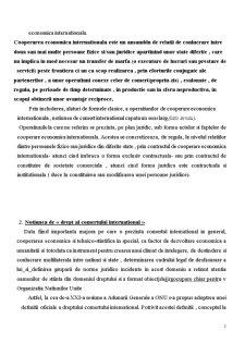 Importanta Dreptului Comercial International si Suveranitatea - Pagina 3