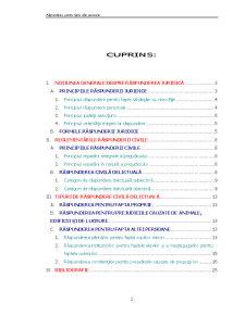 Răspunderea pentru Fapta altei Persoane - Pagina 2