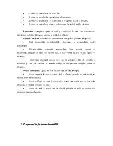 Auditul unui Sistem Informatic - Pagina 4