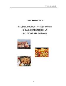 Studiul Productivitatii Muncii si Caile Cresterii ei la SC Cicos SRL Dorohoi - Pagina 1