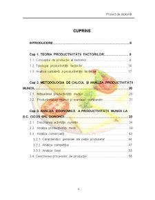 Studiul Productivitatii Muncii si Caile Cresterii ei la SC Cicos SRL Dorohoi - Pagina 2