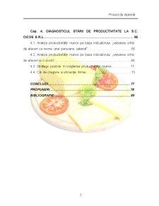 Studiul Productivitatii Muncii si Caile Cresterii ei la SC Cicos SRL Dorohoi - Pagina 3