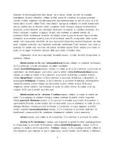 Biologie Moleculara si Celulara - Pagina 4