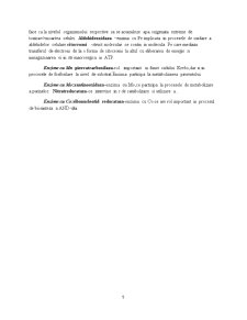 Biologie Moleculara si Celulara - Pagina 5