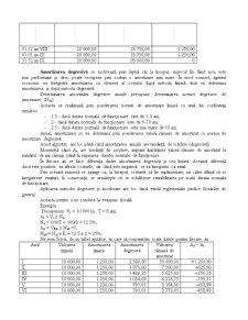 Amortizarea Liniară - Pagina 2