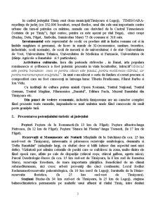 Judetul Timis - Pagina 3