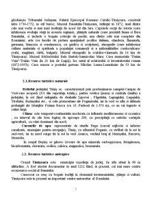 Judetul Timis - Pagina 5
