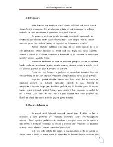 Riscul Managementului Bancar - Pagina 3