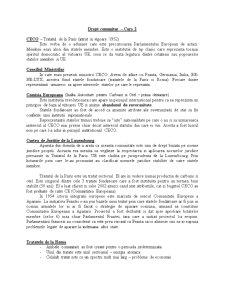 Drept Comunitar European - Pagina 2