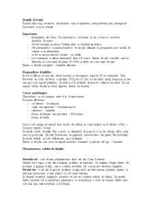 Microbiologie Generala - Pagina 1