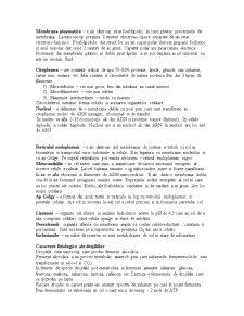 Microbiologie Generala - Pagina 2