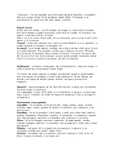 Mucegaiuri, Bacterii - Pagina 3