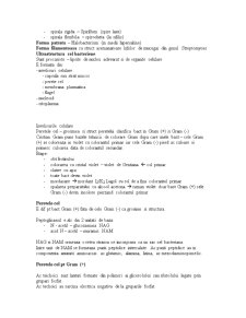 Mucegaiuri, Bacterii - Pagina 5
