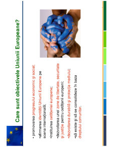 Curs Uniunea Europeana - Pagina 3