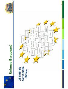 Curs Uniunea Europeana - Pagina 5