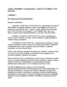 Analiza Cheltuielilor la Intreprinderea Agricola SC Emiliana West Rom SRL - Pagina 3