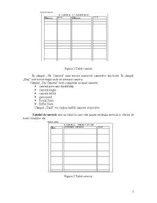 Proiectarea și Realizarea unui Sistem Informatic - Pagina 3