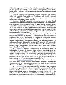Moara de Grau cu Capacitatea de 60 de Tone in 24 de Ore - Pagina 4