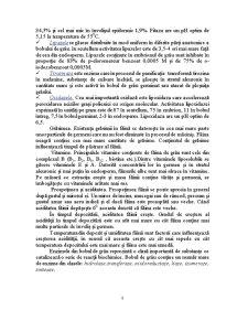 Moara de Grau cu Capacitatea de 60 de Tone in 24 de Ore - Pagina 5
