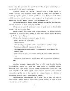 Microbiota Normală a Mamiferelor - Pagina 2