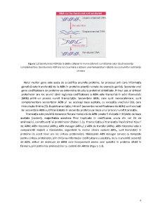 Ecologie si Filogenie Moleculara - Pagina 4