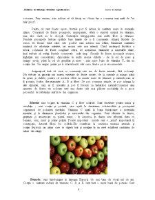 Impactul Congelarii in Strat Fluidizat si a Perioadei de Depozitare asupra Calitatii unor Fructe - Pagina 4