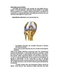 Reeducarea Funcțională Ambulatorie a Genunchiului După Ligamentoplastie - Pagina 3