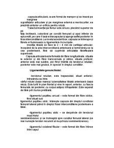 Reeducarea Funcțională Ambulatorie a Genunchiului După Ligamentoplastie - Pagina 5