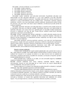Deviatiile Coloanei Vertebrale in Plan Sagital - Pagina 4