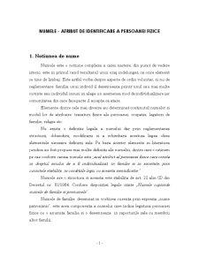 Numele - Atribut de Identificare a Persoanei Fizice - Pagina 1