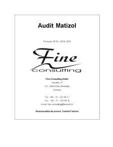 Raport de Audit - SC Matizol SA - Pagina 1
