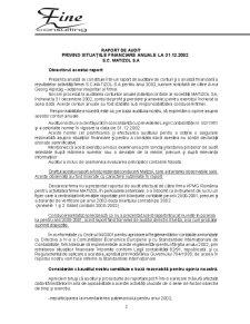 Raport de Audit - SC Matizol SA - Pagina 2
