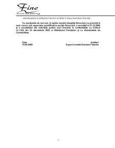 Raport de Audit - SC Matizol SA - Pagina 3