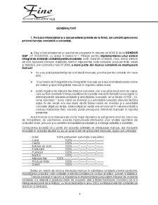 Raport de Audit - SC Matizol SA - Pagina 4
