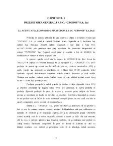 Contabilitatea Capitalurilor Proprii - Pagina 3