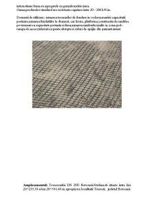 Consolidarea Terenului de Fundare cu Geogrile - Pagina 3
